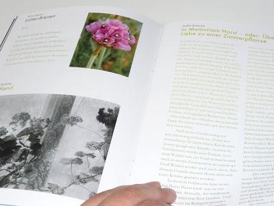 indre Zetzsche, publikation, pflanzenliebe, in memoriam horst, avocadopflanze