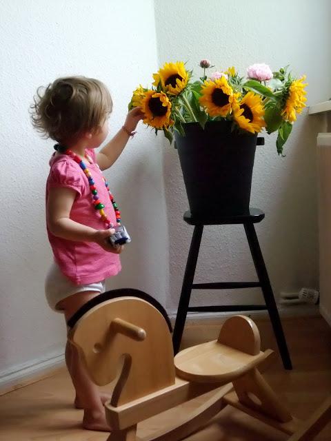 Sonnenblumen, ein Eimer voll Blumen