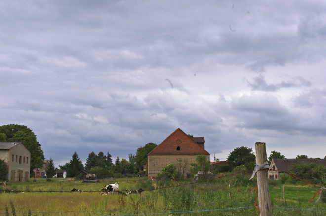 Holunderblueten, Ribbeck, Holunderbluetengelee, Holunderbluetensirup, Ausflug, Rezept, Brandenburg