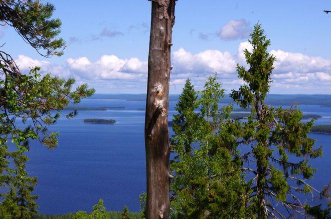 big blue, blau, see, finnland, sehnsucht, suomi, reisebericht