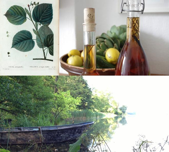 urban jungle bloggers, gruen, pflanzen, sommergetraenk