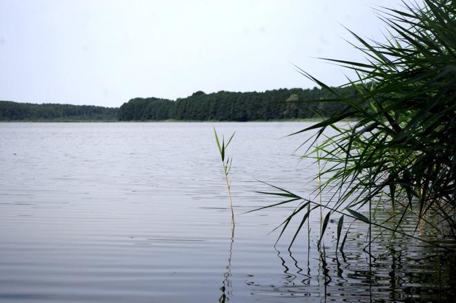 Sommerfrischler, Mecklenburg-Vorpommern