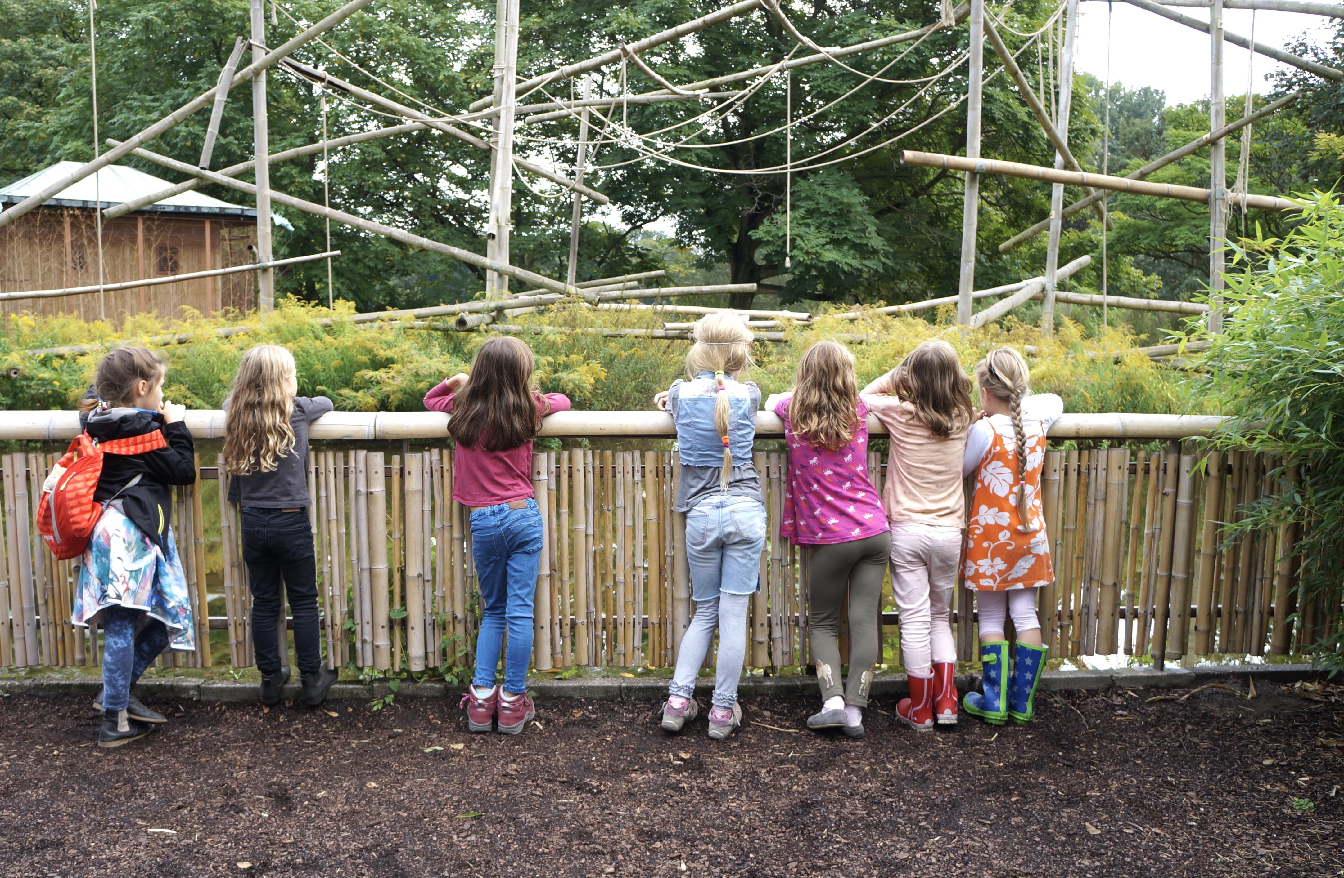 Kindergeburtstag im Berliner Tierpark
