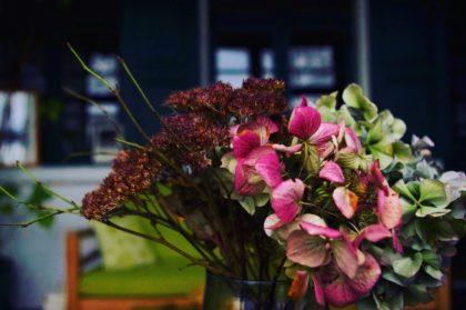 Die Blumen im Interims-Sommerhaus von Eduard Munch in Warnemünde