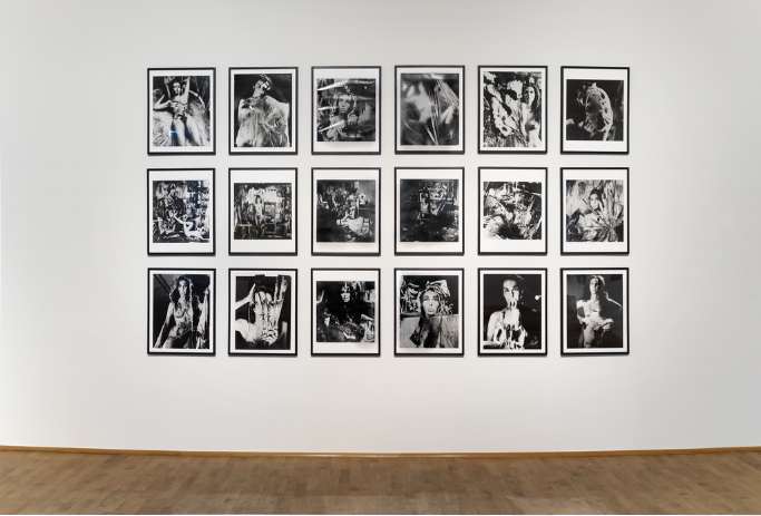 Carolee Schneemann: Eye Body: 36 Transformative Actions for Camera, 1963