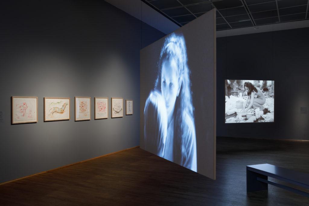 Carolee_Schneemann_Ausstellungsansicht_8