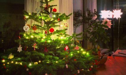 Tannenbaum, Weihnachtsbaum