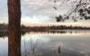 Wurzacher Ried Moor Wanderungen Alleinsein