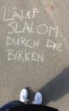 Lauf Slalom durch die Birken
